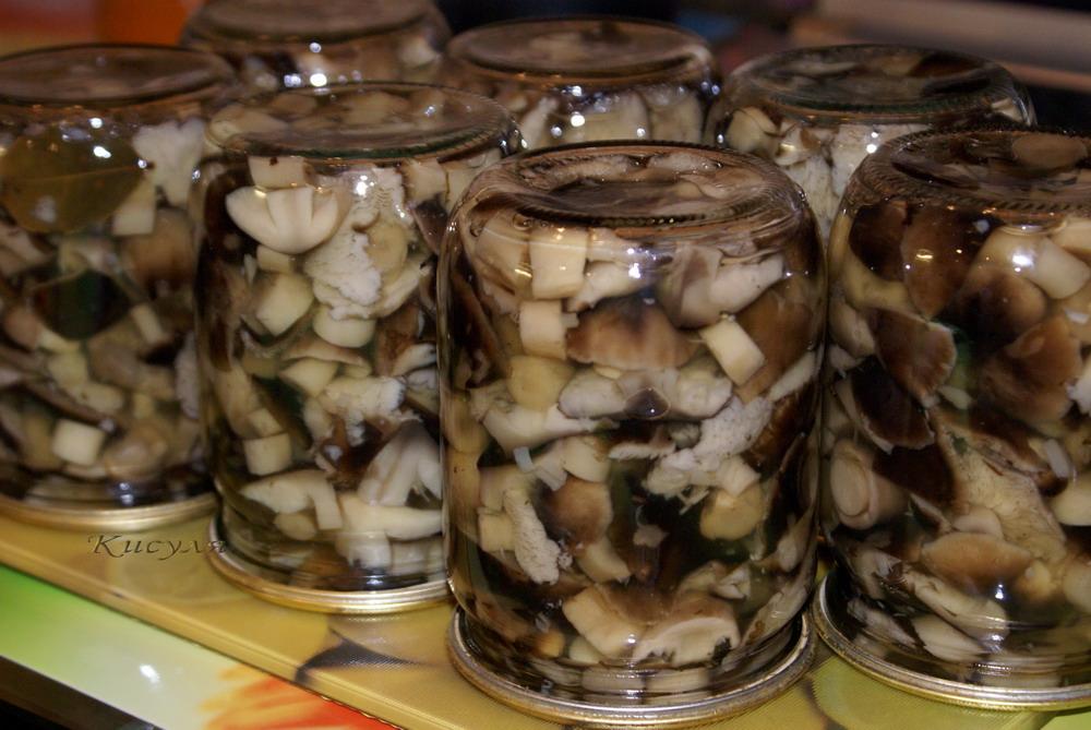 Рецепты маринованных грибов без уксуса